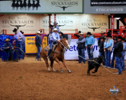 Brooke-roping-on-A-Glamorous-Guy-Nitro-at-the-2019-American-Semi-Finals, harrington hirschy horses