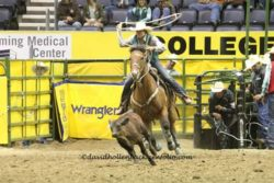 Brooke-roping-on-Rastus-Bunny-Bonnie-at-the-14-CNFR.