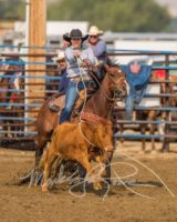 Cate-and-Whiskey-Boomnic-Boomer-at-a-summer-rodeo. harrington hirschy horses