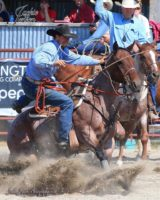 Tyler Hedrick calf roping on juice, harrington hirschy horses