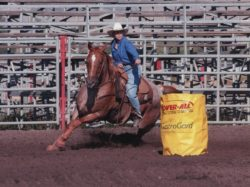 Mary on Dashers Tana, Zip at Helena Futurity 2005, harrington hirschy horses