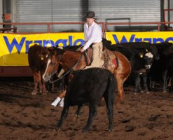 Murphy-and-Starlight-Deuce-cutting-at-the-National-High-School-Finals-Rodeo, harrington hirschy horses