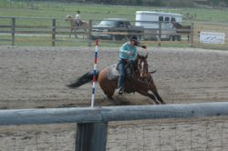 Murphy-on-Oakies-Coz-at-a-high-school-rodeo-09. harrington hirschy horses